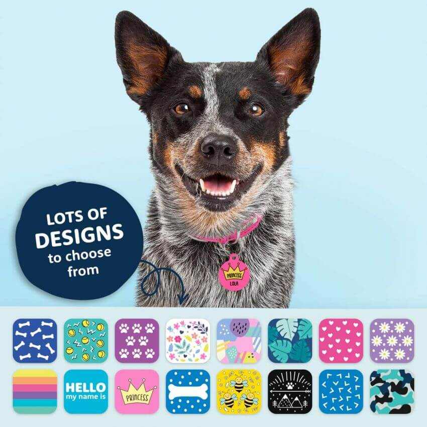 shows some of the free samples of dog tag personalized we provide