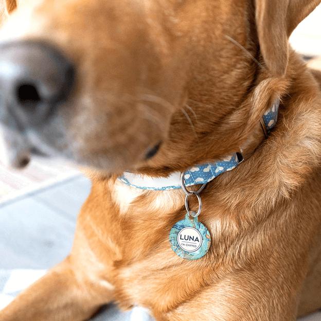 Dog Tag Font